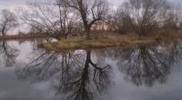 Spiegelung in der Havel